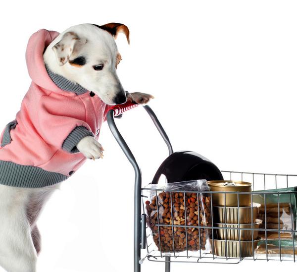 Pet food: la Gdo rafforza nuovamente il suo primato