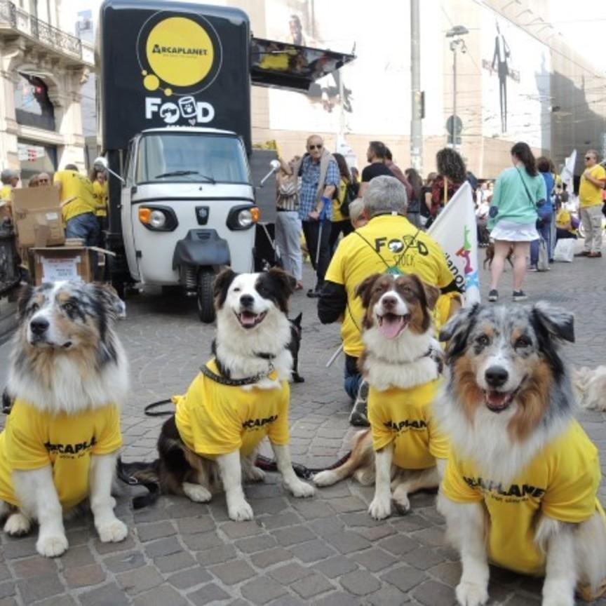 Arcaplanet: donate nel 2019 oltre 194 tonnellate di cibo per pet in difficoltà