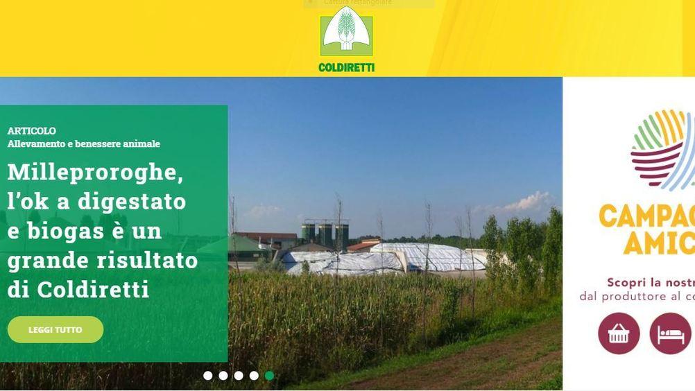 Coldiretti: l'export di Parmigiano negli Usa si è dimezzato