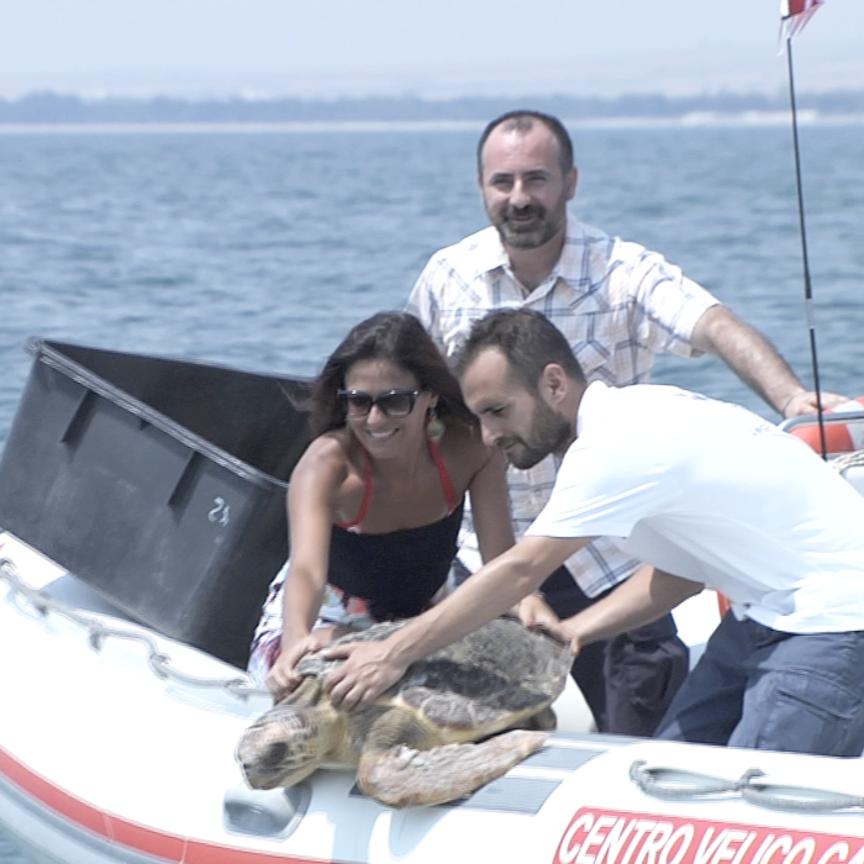 Mareblu e Legambiente salvano tartaruga marina