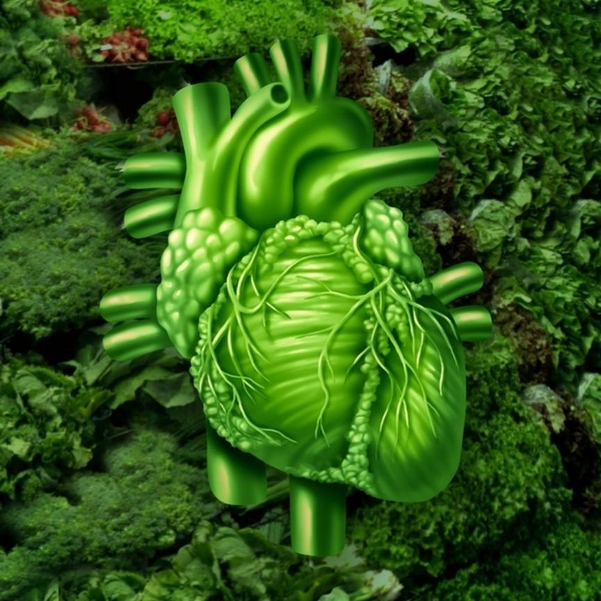 Arriva, da Dnv Gl, la certificazione vegana