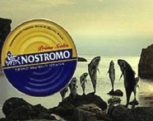 Nostromo: nuovi progetti all'insegna della sostenibilità