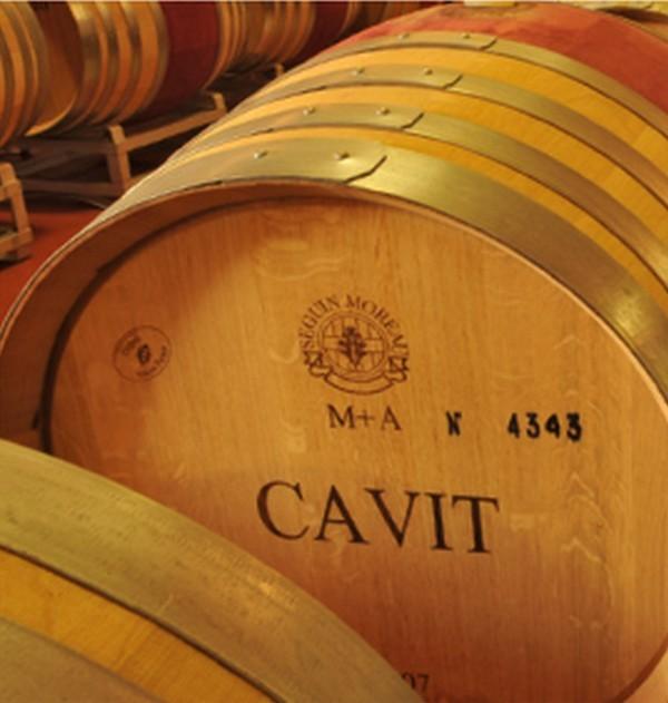 Gruppo Cavit: cresce il fatturato in Italia e all'estero