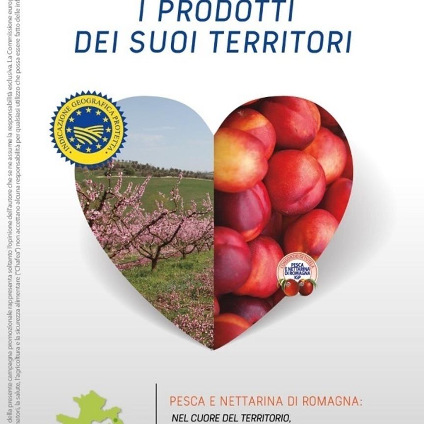 Pesca e Nettarina di Romagna Igp protagoniste della campagna di comunicazione Ue