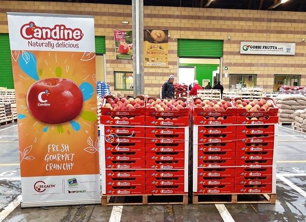 La mela Candine arriva sui mercati ortofrutticoli