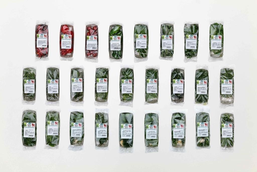 Sipo investe nella filiera delle erbe aromatiche e spezie