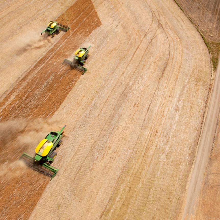 Bonifiche Ferraresi: mille ettari di agricoltura biologica in Sardegna