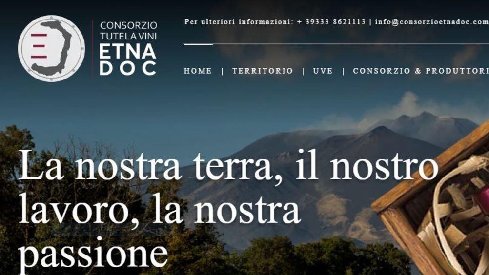 Osservatorio Etna: al via l'indagine per fotografare l'organizzazione delle aziende vitivinicole etnee
