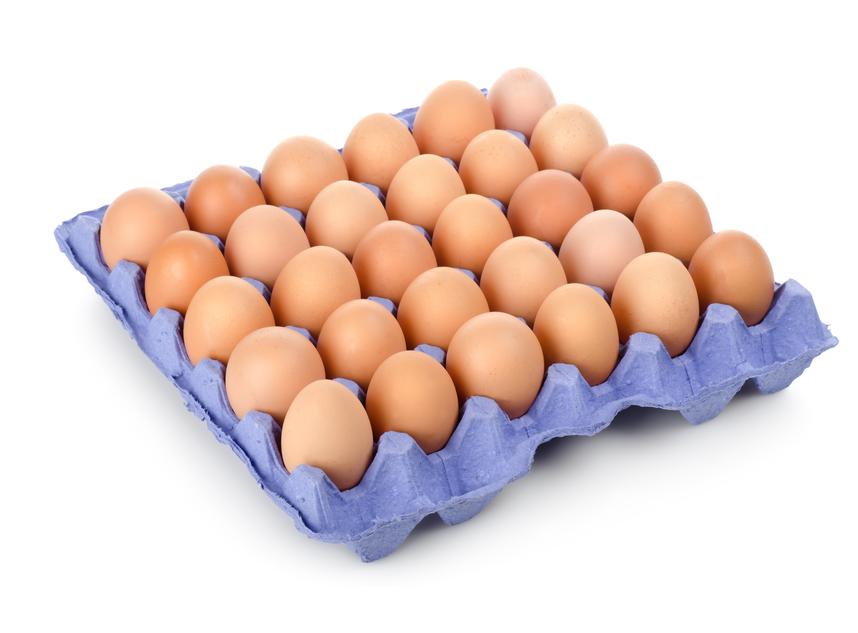 Uova a tutto bio
