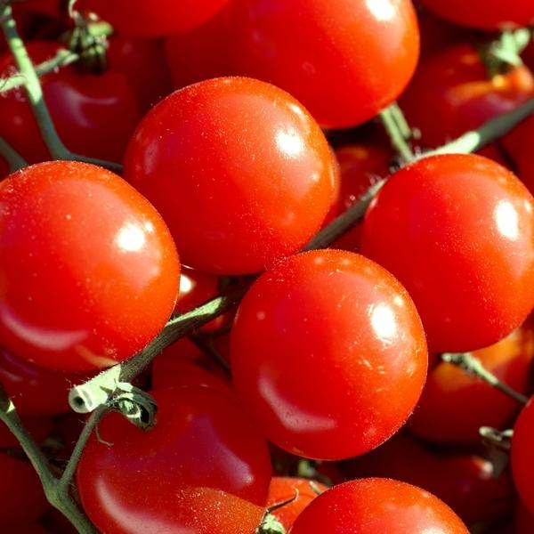 Origine del pomodoro in etichetta: ecco cosa cambia