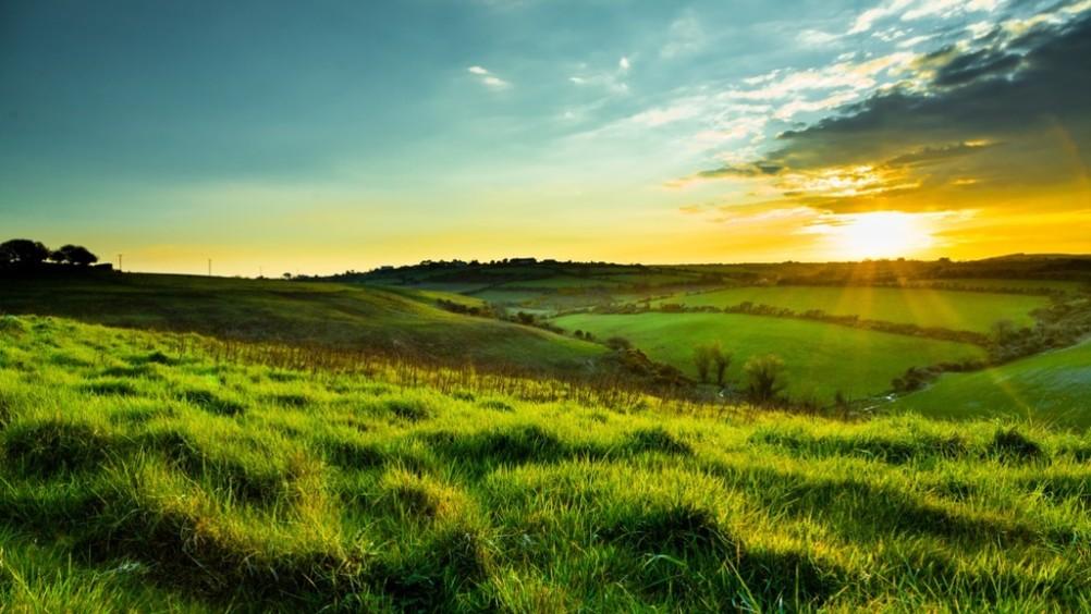 Origin Green: come la carne irlandese risponde alla sfida della sostenibilità
