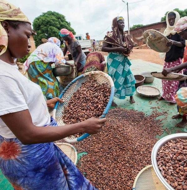 Vendite in forte aumento per i prodotti equosolidali a marchio Fairtrade