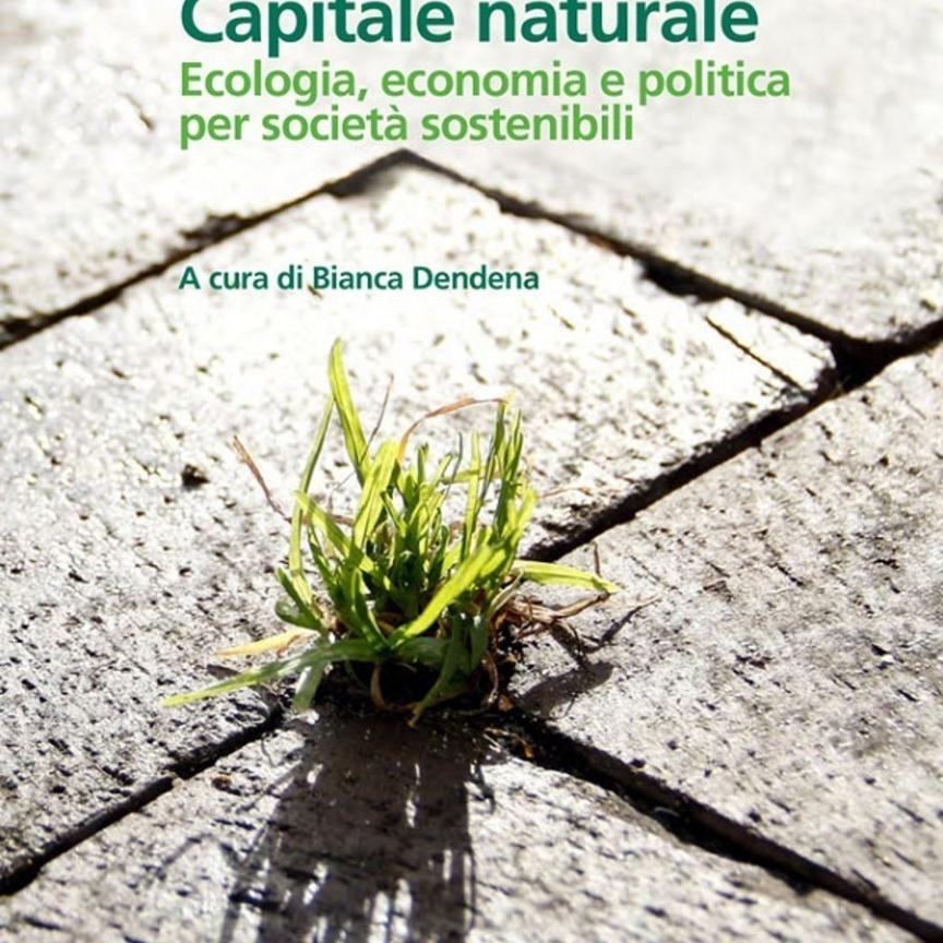"""Sofidel propone l'e-book """"Capitale naturale: ecologia, economia e politica per società sostenibili"""""""