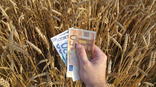 Bond food Mezzogiorno: 27 milioni per otto aziende