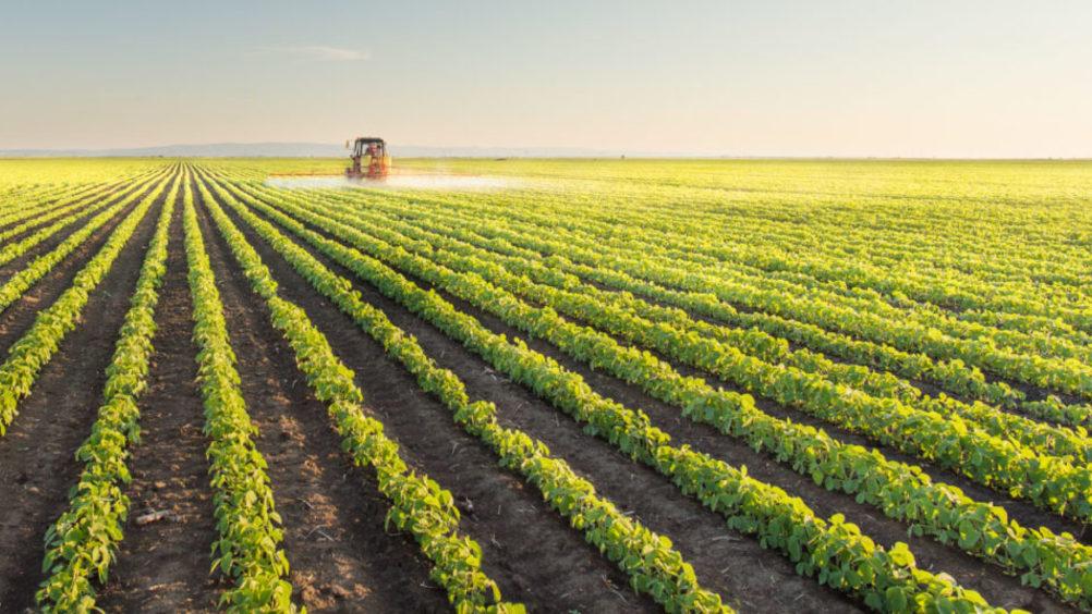 Istat, Alleanza Cooperative: su calo produzione agricola pesano gli effetti dei cambiamenti climatici