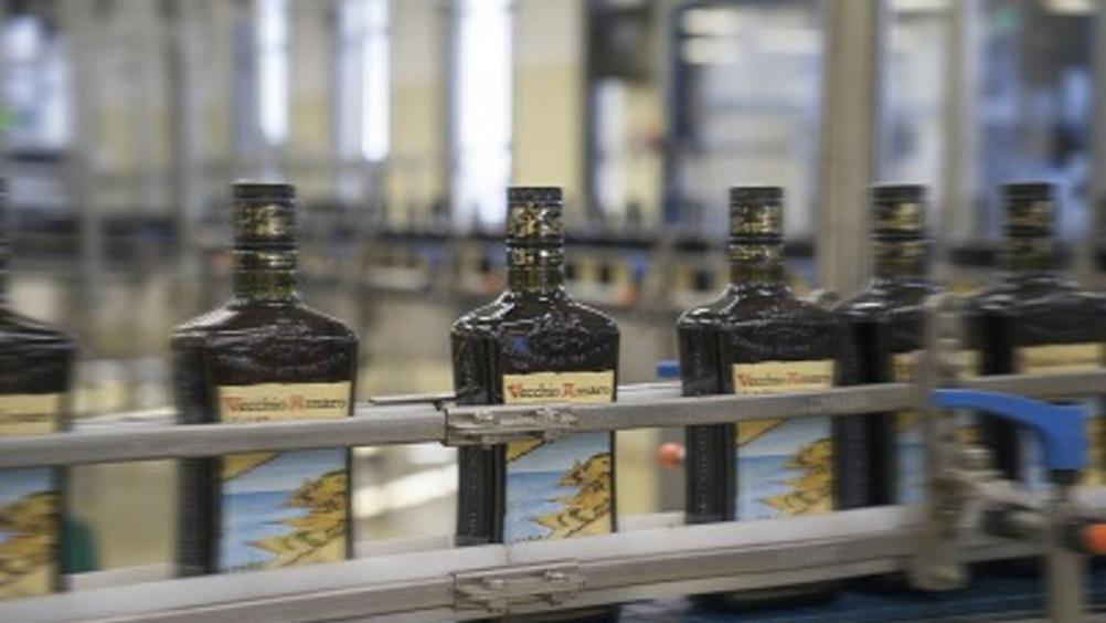 Vecchio Amaro del Capo in produzione