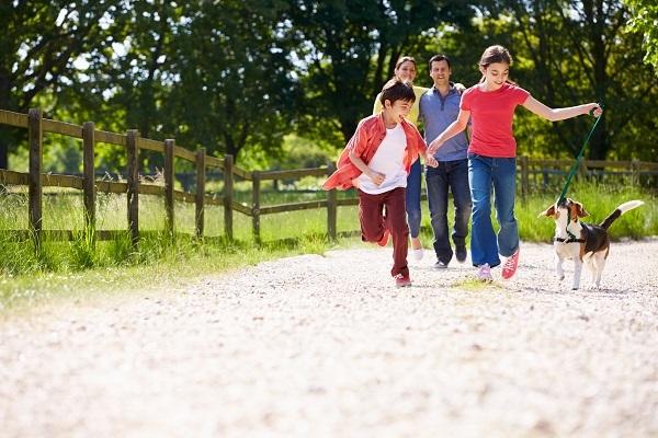 Assalco-Zoomark: pet membri della famiglia per oltre l'80% degli italiani