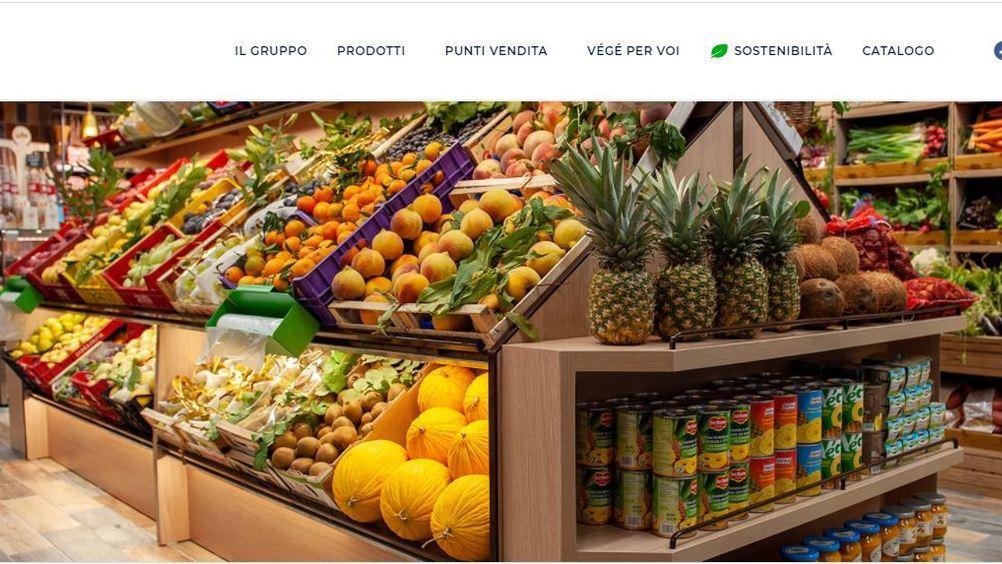 Gruppo VéGé e Everli: sì a spesa online con consegna a domicilio