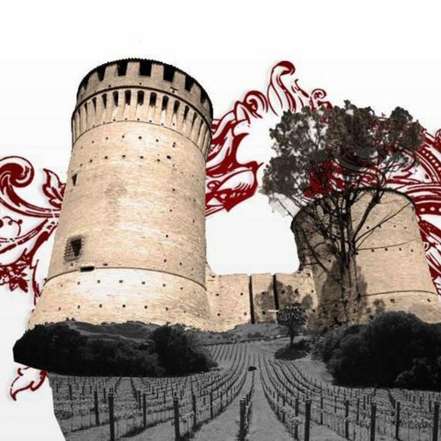Terre Cevico corre in Italia e all'estero