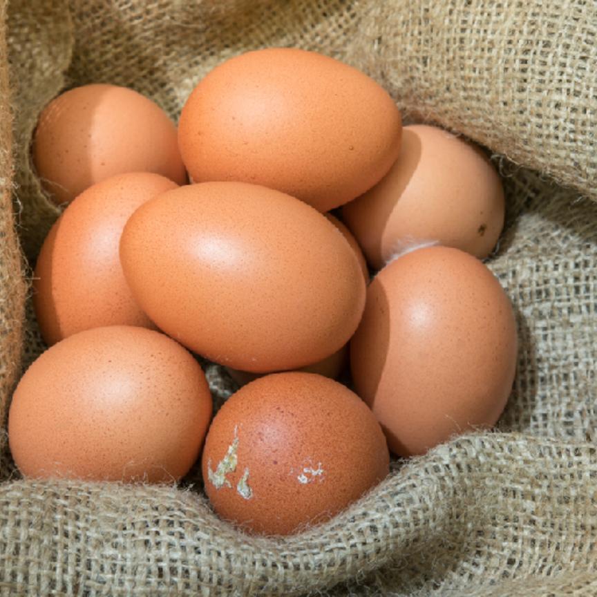 Uova, i consumi crescono... secondo natura