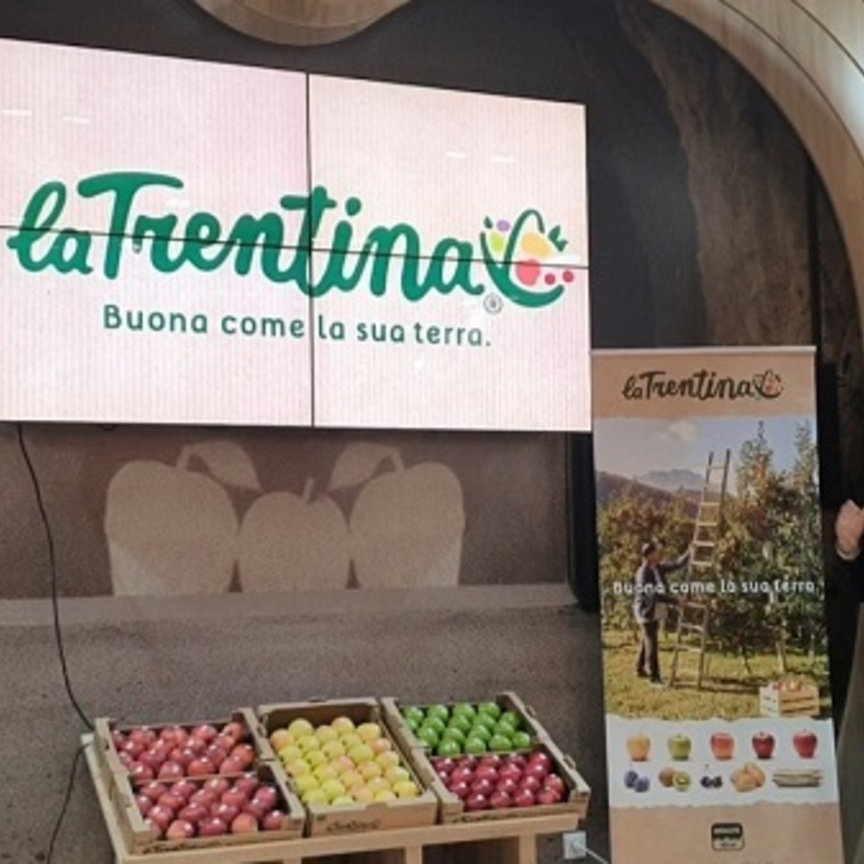 Consorzio La Trentina: nuova brand image e nuovo posizionamento