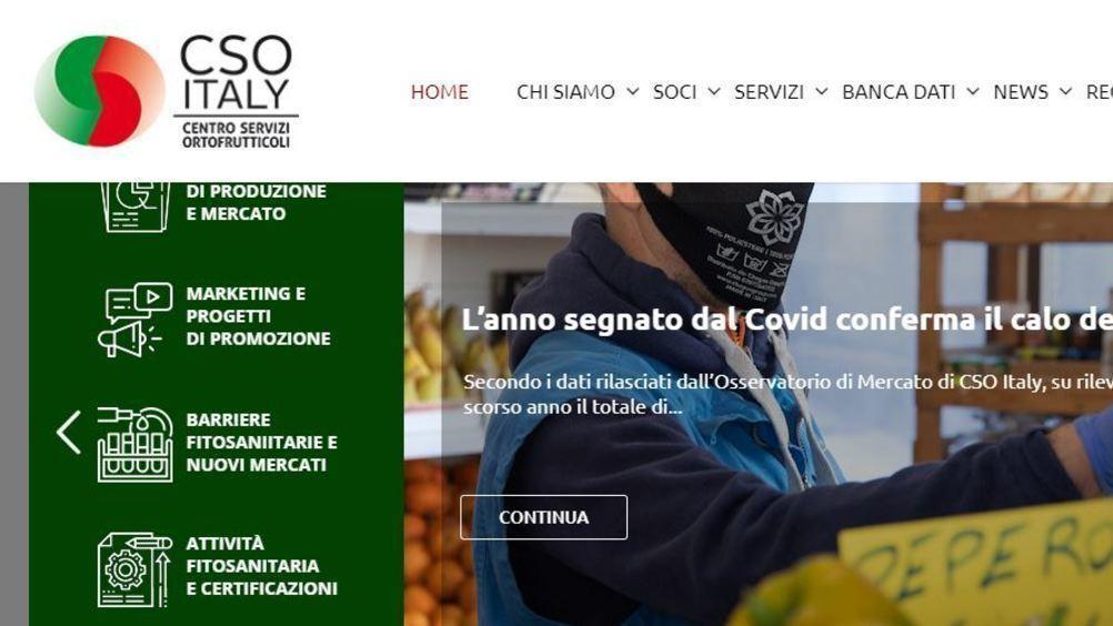 Cso e Italmercati, strategie comuni per ottimizzare i progetti nel Recovery Plan