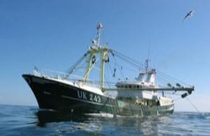 North Sea Fish Center: pesca alla platessa nel segno della sostenibilità