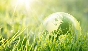 Consumatori responsabili e informati: la gdo può fare la differenza