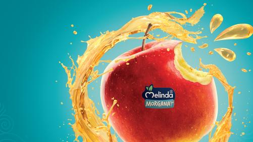 Melinda Morgana: fine stagione a tempo di record