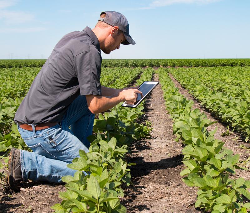 Nell'alimentare l'agricoltura resta la cenerentola della busta paga