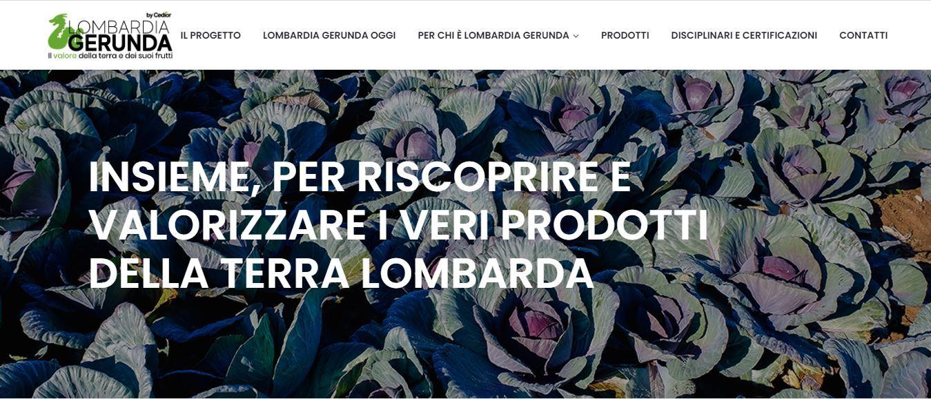 Il gruppo Cedior presenta il progetto Lombardia Gerunda