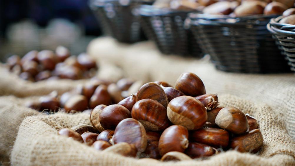 Idea Agro investe in Ingino, re delle castagne