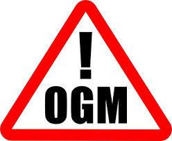 Ogm: Italia sostiene modifica normativa Ue per consentire divieti nazionali