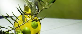 Nasce in Assitol un nuovo gruppo che rappresenta il settore del biodiesel