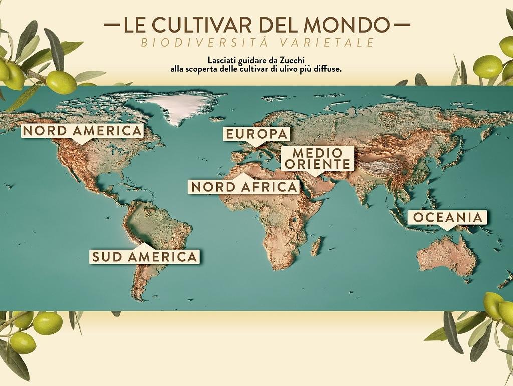 Oleificio Zucchi lancia la nuova sezione del sito web