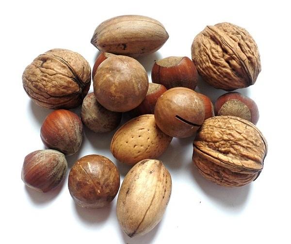 Frutta secca ed essiccata: produzione mondiale in crescita per la stagione 2018-2019