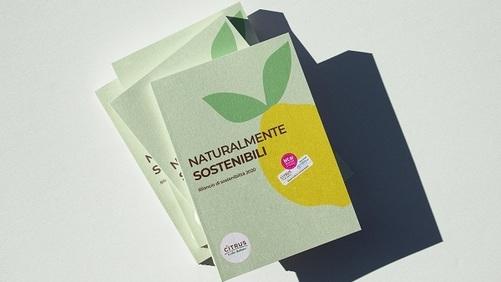 Citrus presenta il suo primo bilancio di sostenibilità