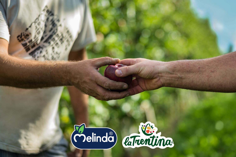 Melinda: insieme ce la faremo!
