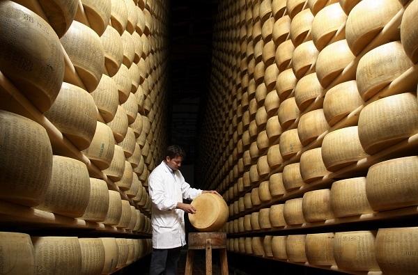 Il Consorzio Parmigiano Reggiano in prima linea per il benessere animale