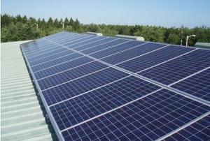 Scottex e Kleenex investono nel fotovoltaico