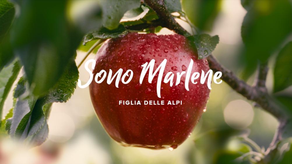 Le quattro stagioni di Marlene. Al via la nuova campagna di comunicazione 2021-2022