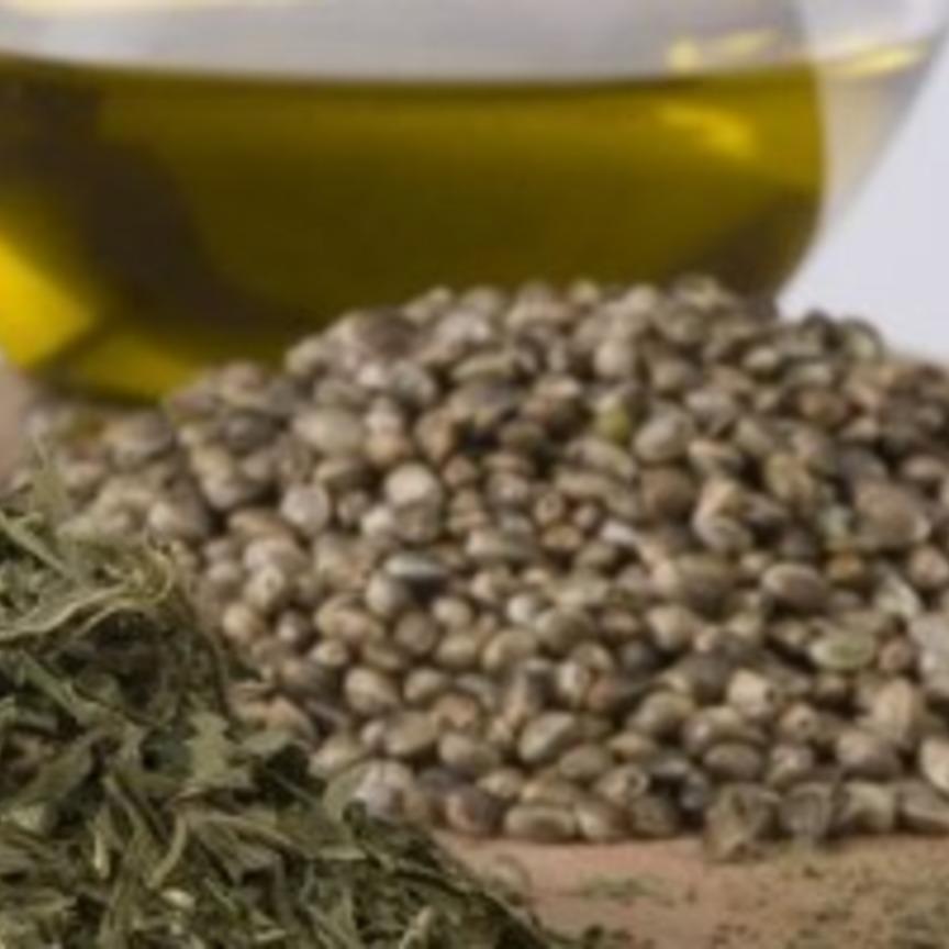 Assitol: gli oli da semi sono in buona salute