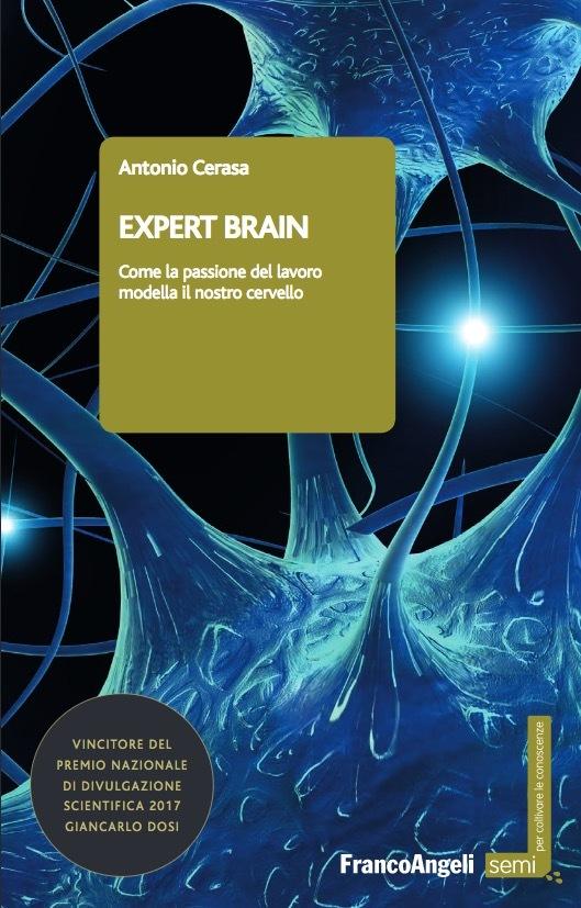 Come la passione del lavoro modella il nostro cervello
