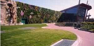 Il centro commerciale Fiordaliso di Rozzano entra nel Guinness dei primati