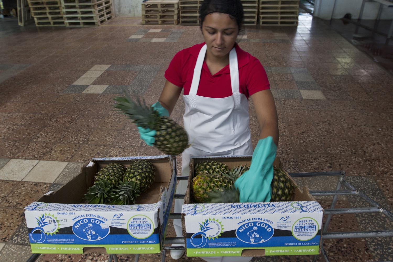 Ananas sempre più sostenibile dal Costa Rica