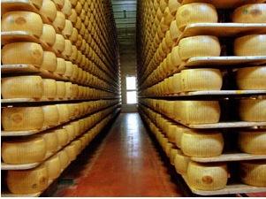 Parmigiano Reggiano in Russia: lotta ai falsi e raddoppio delle esportazioni